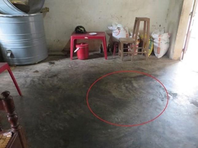 Nghệ An: Khởi tố người chồng uống rượu rồi tưới xăng đốt vợ và con - anh 1