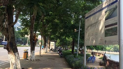 Hà Nội chặt chuyển hơn 100 cây xanh phố Kim Mã - ảnh 1
