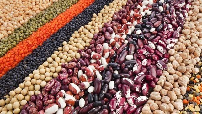 11 loại thực phẩm chứa chất béo có lợi cho sức khỏe - ảnh 7