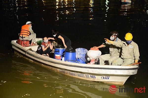 200 tấn cá chết ở Hồ Tây được đưa đi đâu? - ảnh 2