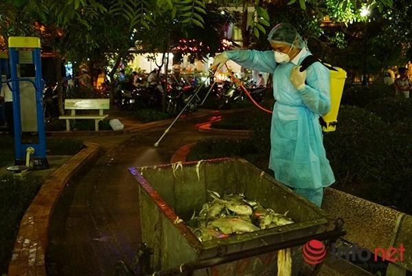 200 tấn cá chết ở Hồ Tây được đưa đi đâu? - ảnh 4