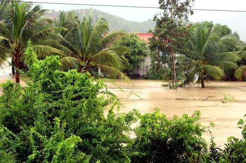 Phú Yên, Bình Định chìm trong biển nước - ảnh 8
