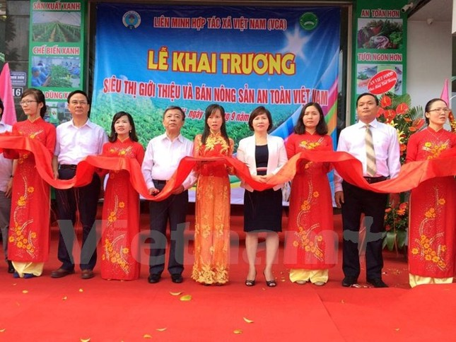 Khai trương siêu thị tiêu thụ nông sản an toàn đầu tiên ở Hà Nội - ảnh 1