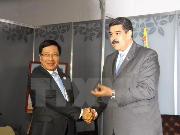 Phó Thủ tướng Phạm Bình Minh hội kiến Tổng thống Venezuela - ảnh 1