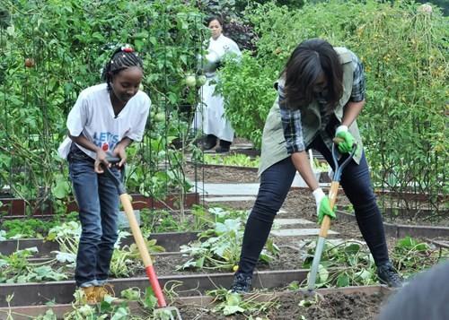 Bà Hillary hứa sẽ chăm sóc vườn rau của nhà Obama nếu đắc cử - ảnh 3