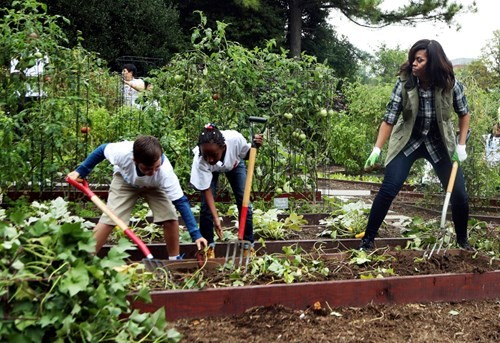 Bà Hillary hứa sẽ chăm sóc vườn rau của nhà Obama nếu đắc cử - ảnh 2