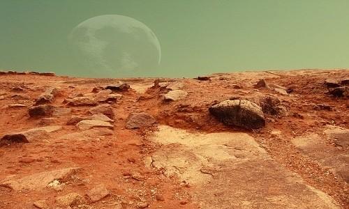 NASA lên kế hoạch trồng rau trên sao Hỏa - ảnh 1