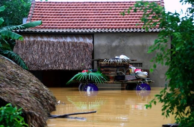 Nghìn người ở Hà Tĩnh chui mái nhà chờ nước rút - ảnh 8