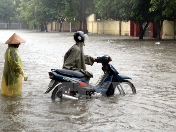 Các địa phương chủ động cho học sinh nghỉ học khi mưa lũ lớn - ảnh 1