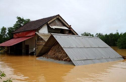 8 người chết do mưa lũ ở miền Trung - ảnh 1
