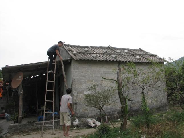 Dân Quảng Ninh chằng nhà, gặt lúa chạy đua với bão - ảnh 6