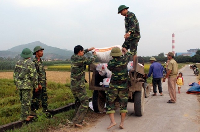 Dân Quảng Ninh chằng nhà, gặt lúa chạy đua với bão - ảnh 8