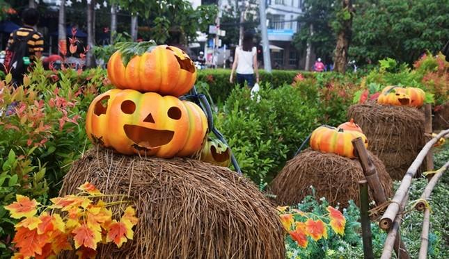 Vườn bí ngô hút khách dịp Halloween ở Sài Gòn - ảnh 1