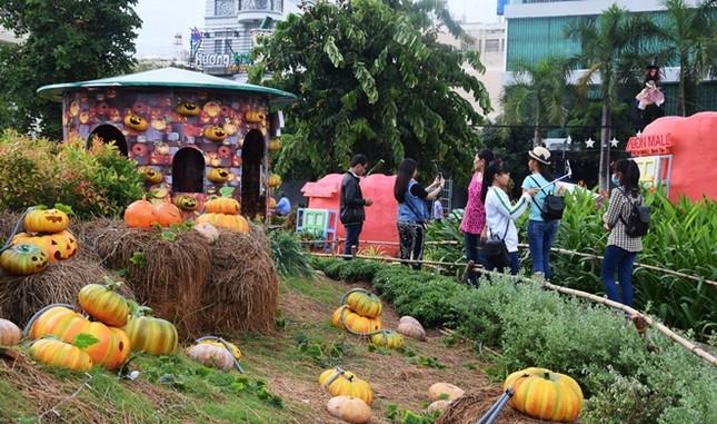 Vườn bí ngô hút khách dịp Halloween ở Sài Gòn - ảnh 3