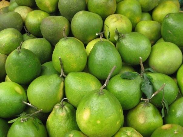 6 loại quả thuần Việt không bao giờ nhập khẩu từ Trung Quốc - ảnh 4
