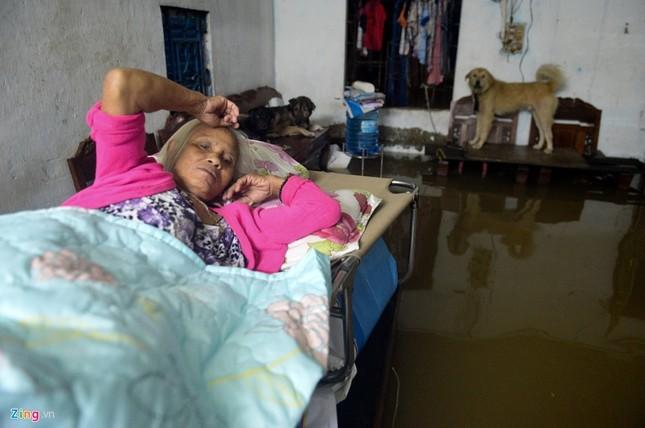 500.000 mỗi lượt đẩy ô tô qua chỗ ngập lụt - ảnh 12