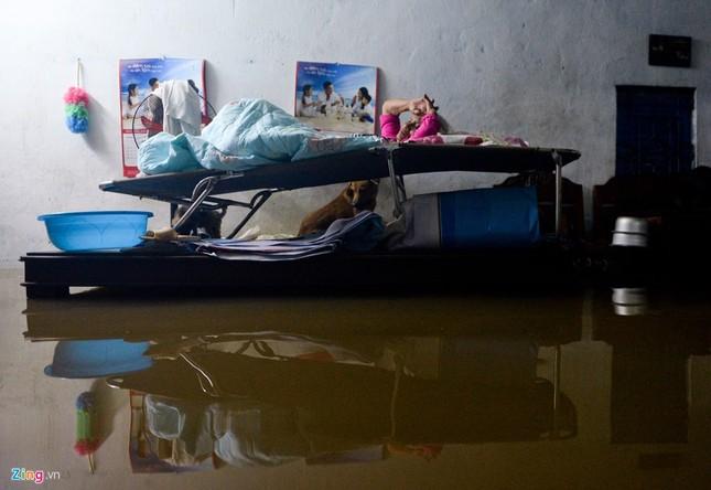 500.000 mỗi lượt đẩy ô tô qua chỗ ngập lụt - ảnh 13