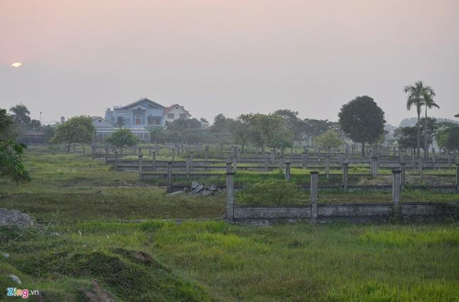 Khu sinh thái nghỉ dưỡng thành nơi chăn bò - ảnh 6