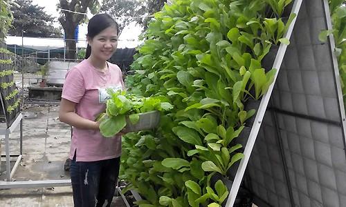 Tháp rau 6m2 cho thu hoạch gần 30 kg chỉ sau một tháng - ảnh 7