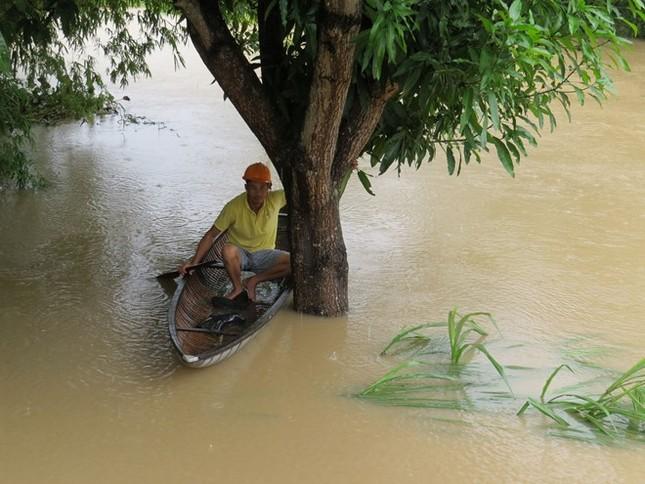 Lũ ngập xe khách ở Phú Yên - ảnh 5