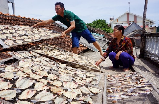 Thủy triều đỏ làm cá chết hàng loạt ở Thanh Hóa - ảnh 1