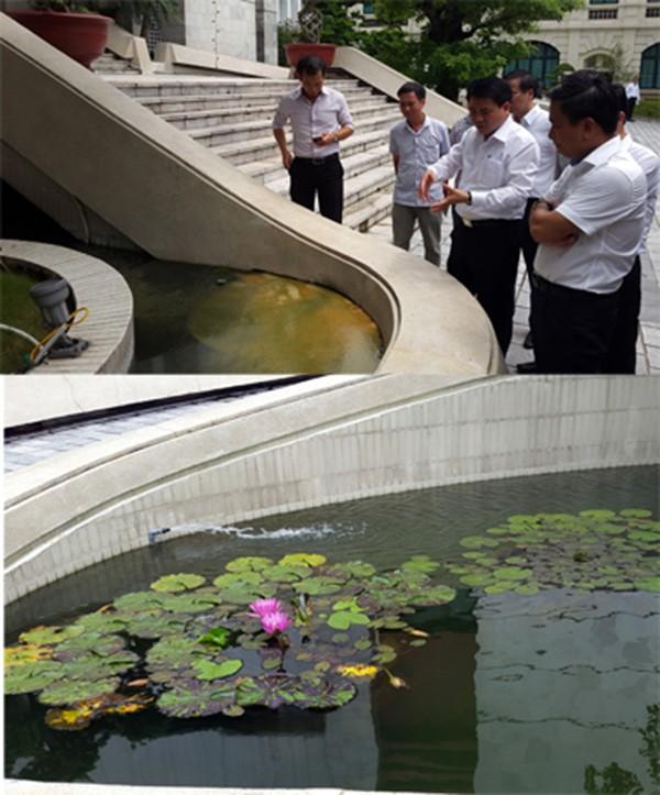 Hà Nội thử nghiệm chế phẩm đặc biệt 'giải cứu' hồ ô nhiễm - ảnh 1