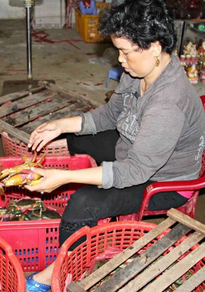 Trung Quốc giảm mua, cua biển Cà Mau lại rớt giá - ảnh 1
