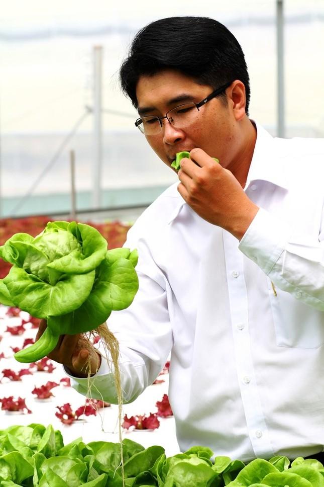 Rau thủy canh thu hoạch 15 vụ mỗi năm, ăn không cần rửa - ảnh 13