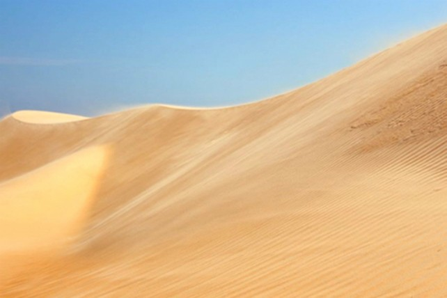 Trekking qua những đồi cát tuyệt đẹp ở Bình Thuận - ảnh 6