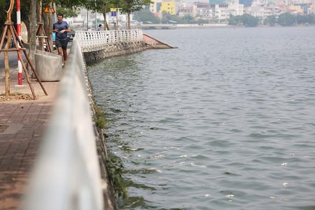 Hồ Tây sau 10 ngày cá chết hàng loạt - ảnh 6