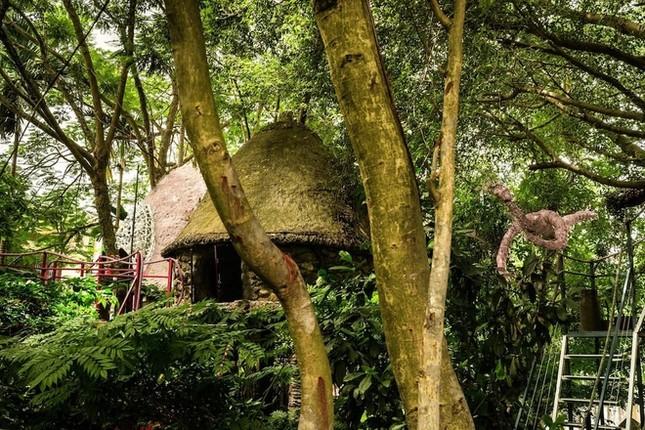 Homestay trên cây ở ngoại thành Hà Nội - ảnh 1