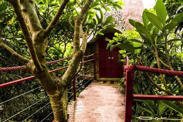 Homestay trên cây ở ngoại thành Hà Nội - ảnh 3