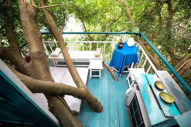 Homestay trên cây ở ngoại thành Hà Nội - ảnh 5