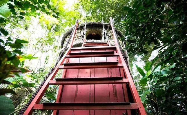 Homestay trên cây ở ngoại thành Hà Nội - ảnh 6
