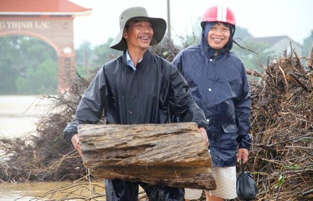 Nhiều người bất chấp nguy hiểm vớt gỗ giữa lũ - ảnh 9