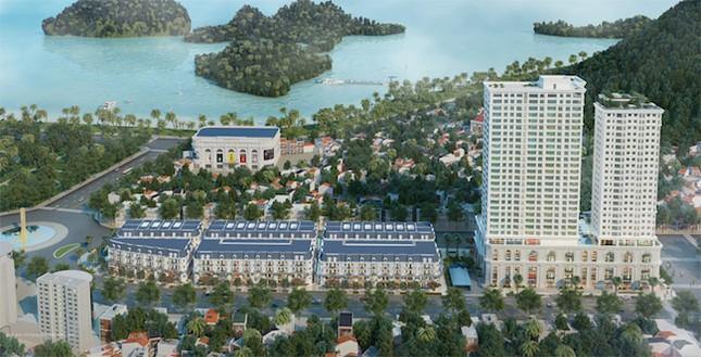 Cengroup và Times Garden Việt Nam ký kết hợp tác chiến lược - ảnh 2