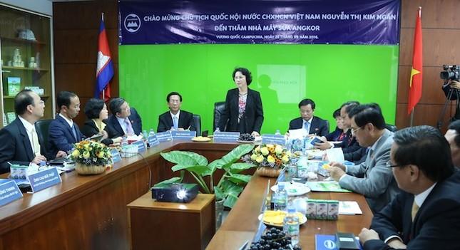 Đoàn đại biểu Quốc hội Việt Nam thăm nhà máy sữa Angkor - ảnh 2