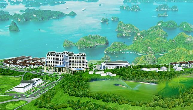 Siêu thị dự án BĐS 'tấn công' thị trường Quảng Ninh - ảnh 2