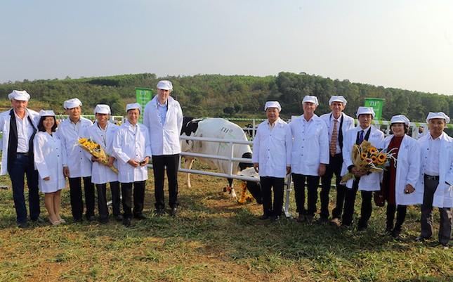 Tập đoàn TH tiên phong làm sữa hữu cơ - ảnh 1