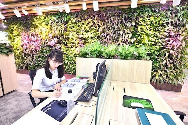 Văn phòng xanh đáng mơ ước của dân công sở - ảnh 3