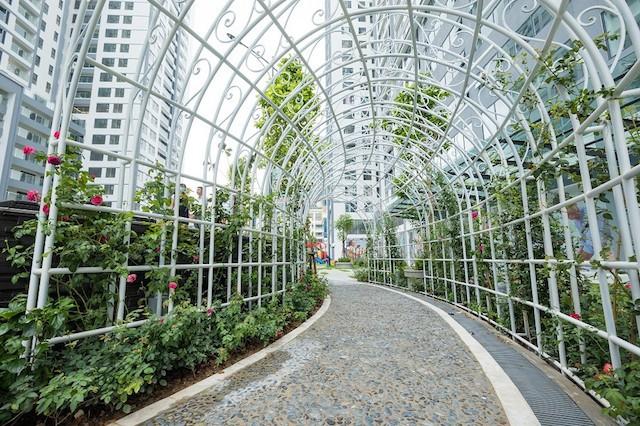 Imperia Garden chính thức vận hành các tiện ích 'Vườn trong phố'    - ảnh 3