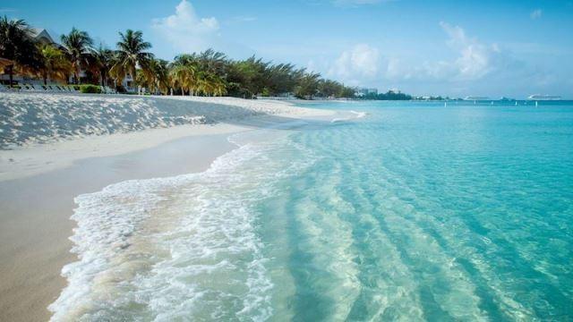 Mövenpick Cam Ranh Resort: Thiên đường nghỉ dưỡng biển - ảnh 1